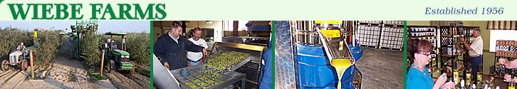 Olive Farm Tours, Gift Shop & Tasting Room  at Wiebe Farms  Dinuba, Reedley CA http://www.factorytoursusa.com/state/california/wiebe-farms/
