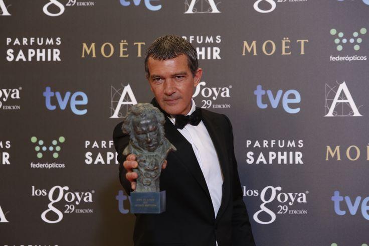 """Premio """"goya de honor"""". Antonio Banderas por toda su trayectoria #goya2015 #federopticos #premiados"""