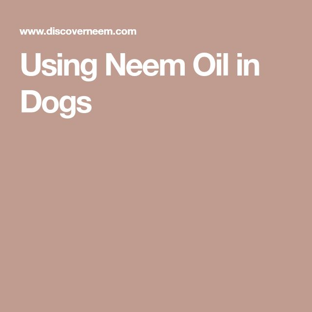 Using Neem Oil in Dogs