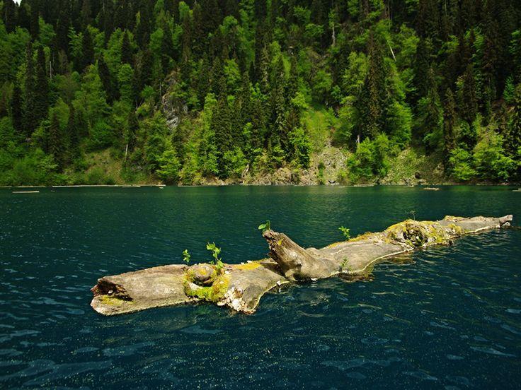 Абхазия. Озеро Малая Рица располагается на выоте 1248 м над уровнем моря.