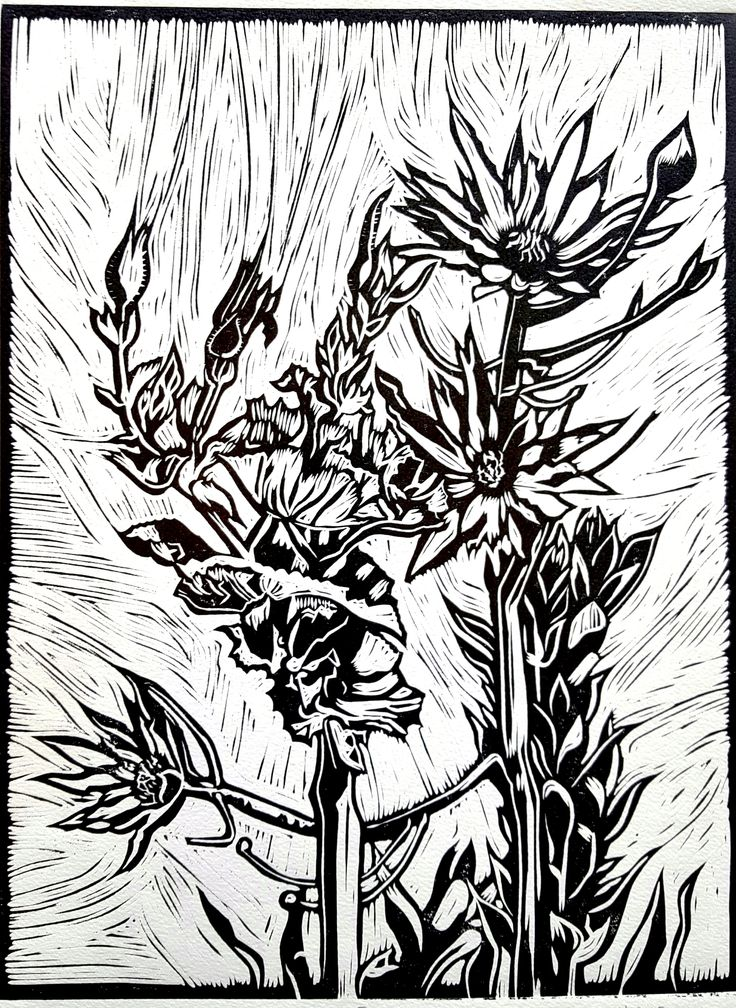 """Fynbos II Lino (Black): In my Lino art, I purposefully focused my attention on the Fynbos species that usually take the backseat to the King Protea and other obvious showpieces. I discovered the intricate beauty in the lines and shapes and textures of the Leucadendrons and seed pods of the Fynbos biosphere.  I was reminded of God's perspective on the so-called """"least of them"""" - how He lovingly lifts every one of His children up as Royalty."""