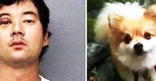 Per vendetta uccide il cagnetto della ex fidanzata e glielo fa mangiare a cena