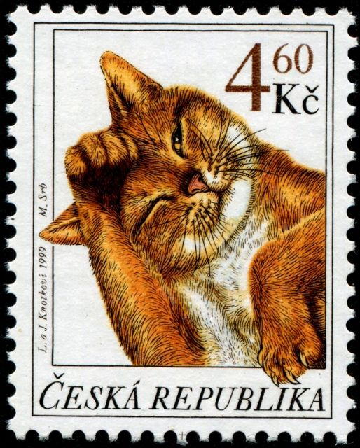 """1st of three stamps in a set depicting domestic cats, designed by the Czech artists Libuše Knotková (1949- ) and Jaromír Knotek (1949- ), who sign their joint art works as """"L. a J. Knotkovi,"""" combined engraved by Martin Srb and photogravure, and issued by Czech Republic on February 17, 1999, Scott Nos. 3078-80."""