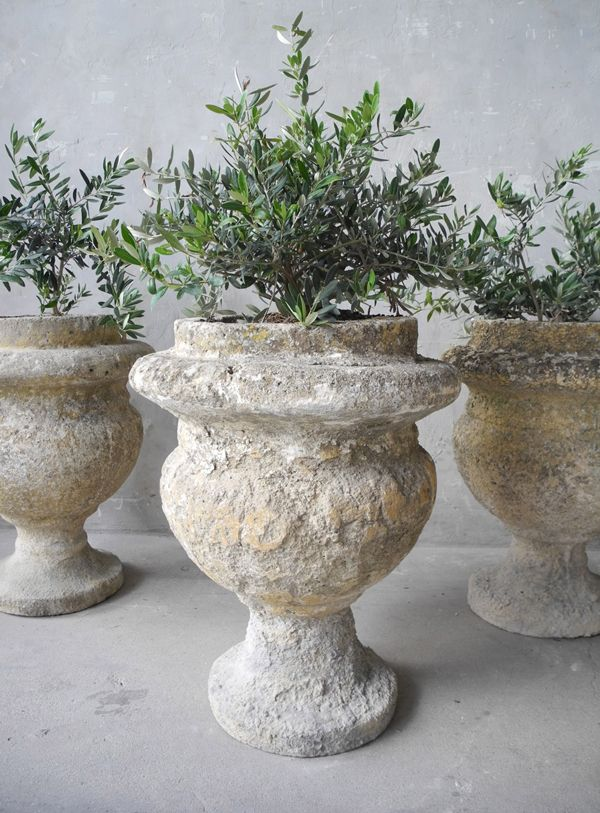 1000 ideas about garden urns on container plants outdoor flower planters and urn