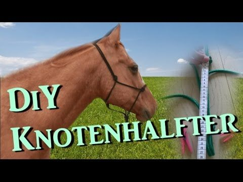 [DiY] Knotenhalfter ganz einfach selber machen - mit Diamantknoten - Tutorial | Serenity Horses - YouTube