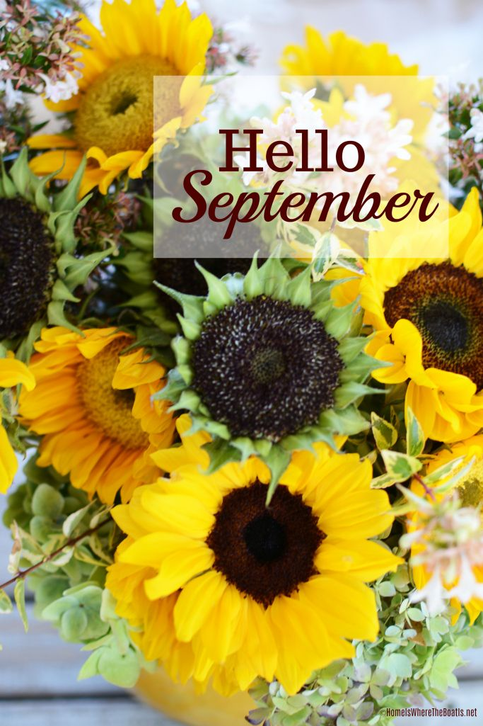 Hello September And Sunflowers On The Porch In 2020 Hello September September Flowers Hello September Images