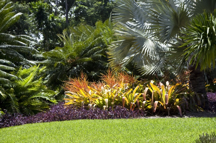 Nice use of several different kinds of palms and colorful bromeliads.