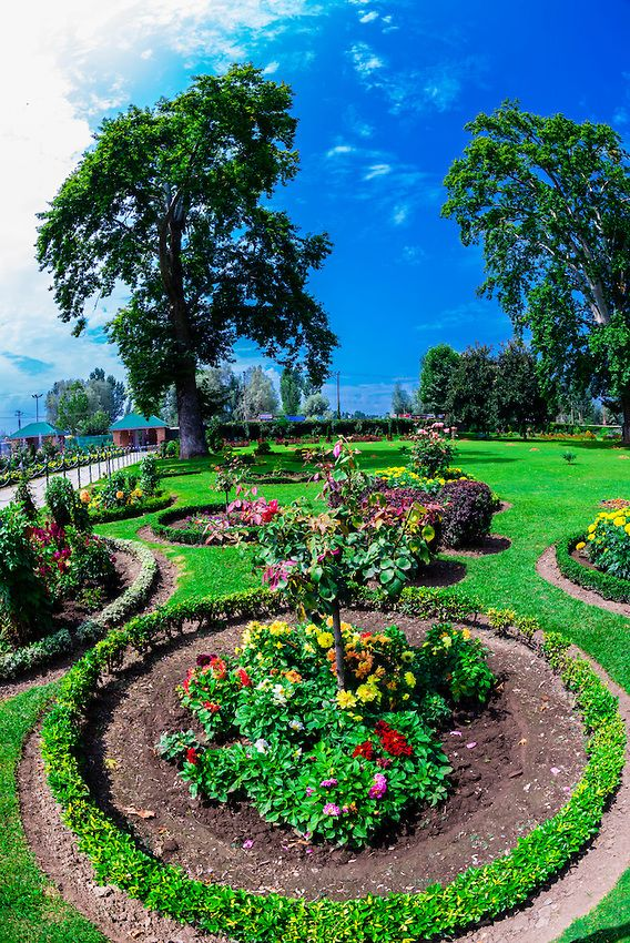 10 best kashmir fruits images on pinterest Mughal garden booking