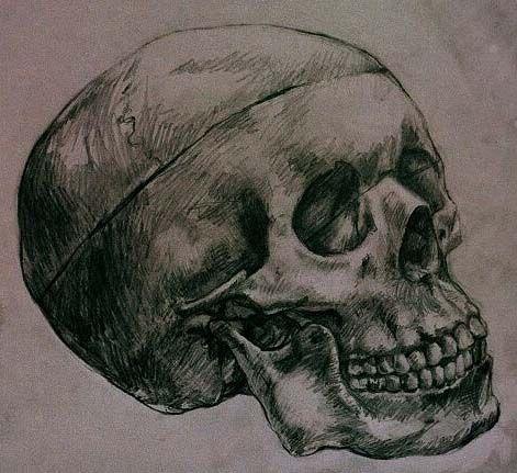 1000 ideas about drawings of skulls on pinterest skulls