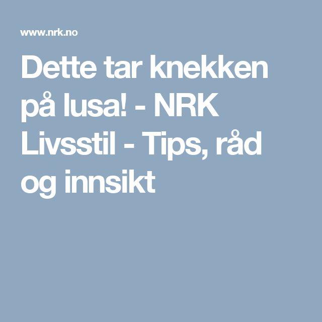 Dette tar knekken på lusa! - NRK Livsstil - Tips, råd og innsikt