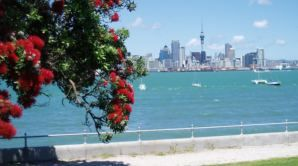 View of city from Devonport