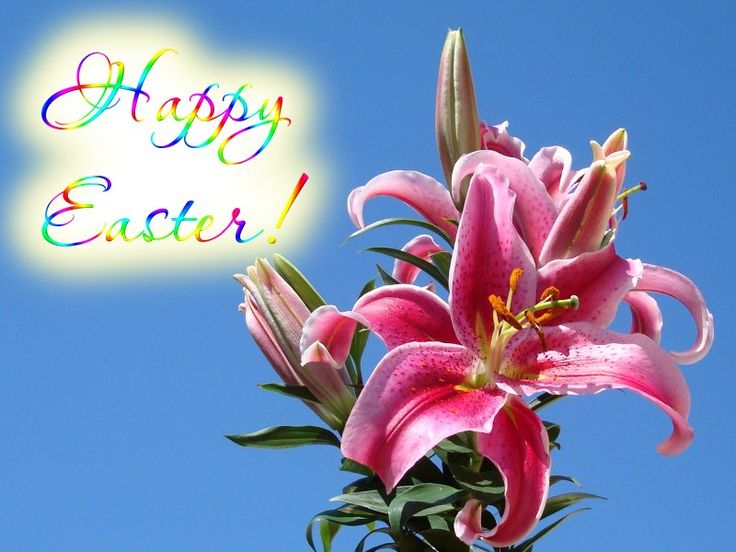 201 best easter images on pinterest accessories austria info happy easter dayeaster negle Images