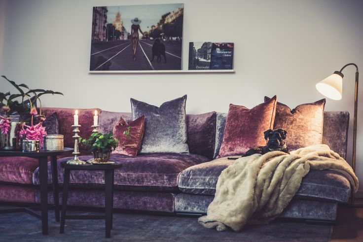Mammuten sammetssoffa, modul, rosa, lila, sammet, soffa, kuddar, sammetskuddar, möbler, vardagsrum, inredning
