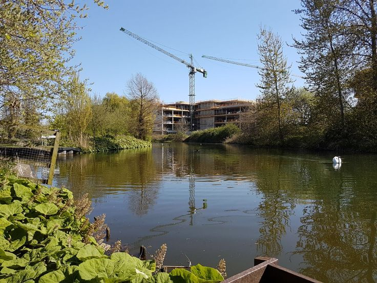 Sunshine, water and blue skies at Waterside today