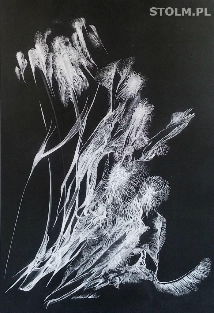 Moss ink on paper black and white artist Stanisława Olszańska Marszałek abstraction art