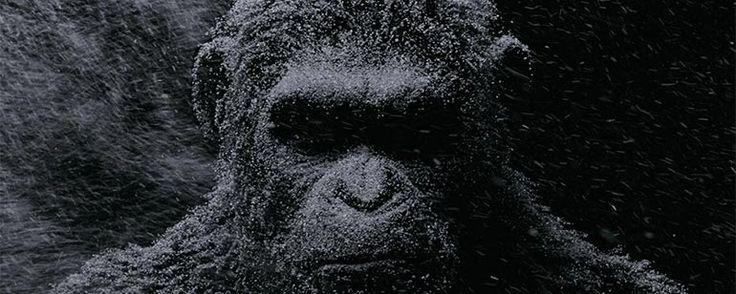 'La Guerra del Planeta de los Simios': Andy Serkis revela que habrá más entregas de esta trilogía