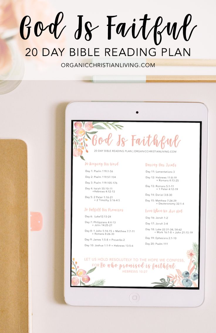 7 Best Bible Study Apps for Christian Women — All Free!