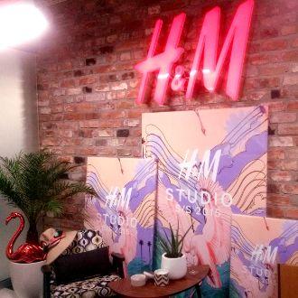 hm studio 2015 - Căutare Google