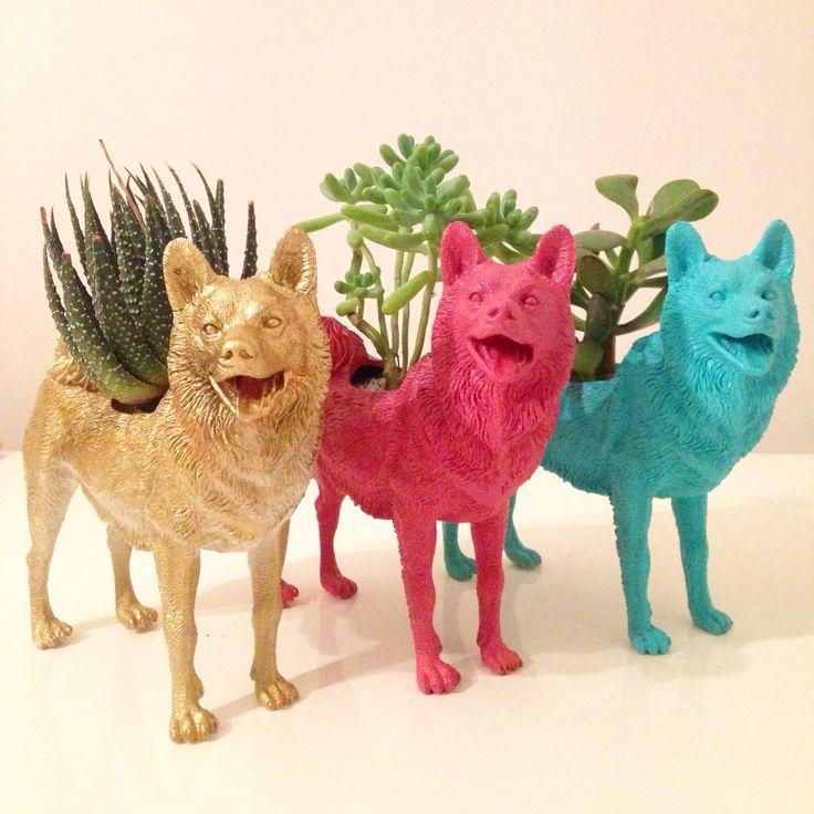 Anima Cactus - macetero perro