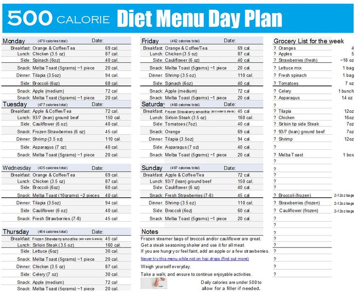 500 Calories A Day Diet Chart