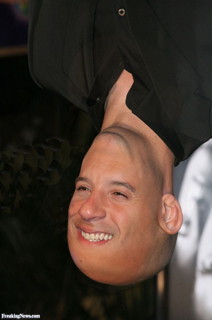 Vin diesel and paul vincent yahoo image search results