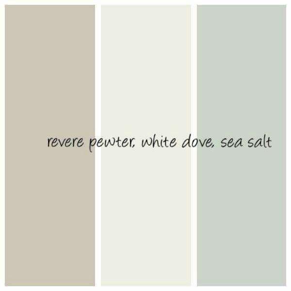 sea salt paint colorBest 25 Sherwin williams sea salt ideas on Pinterest  Sea salt