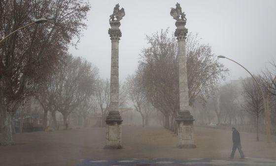 Alameda de Hercules. Sevilla