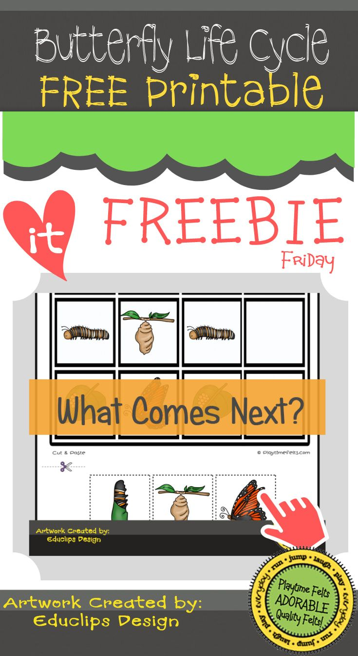 Freebie Friday What S Next Butterfly Printable Totally Free Free Printable Prek Kidsact Butterfly Life Cycle Life Cycles Butterfly Life Cycle Activity [ 1344 x 735 Pixel ]