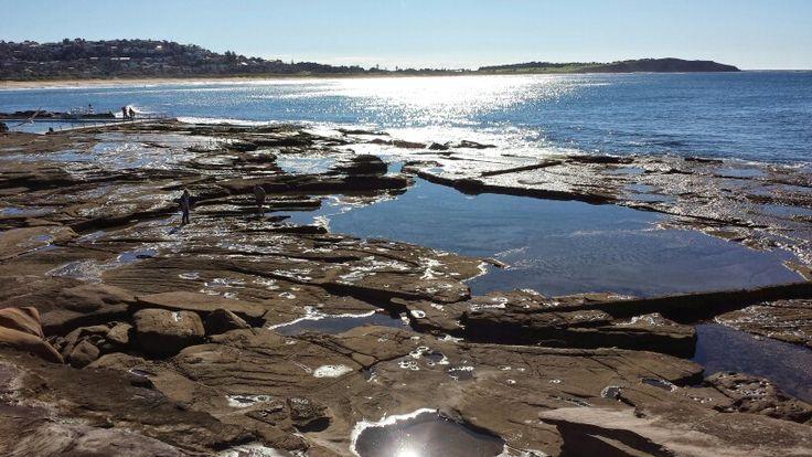 Dee Why Beach,  NSW Australia