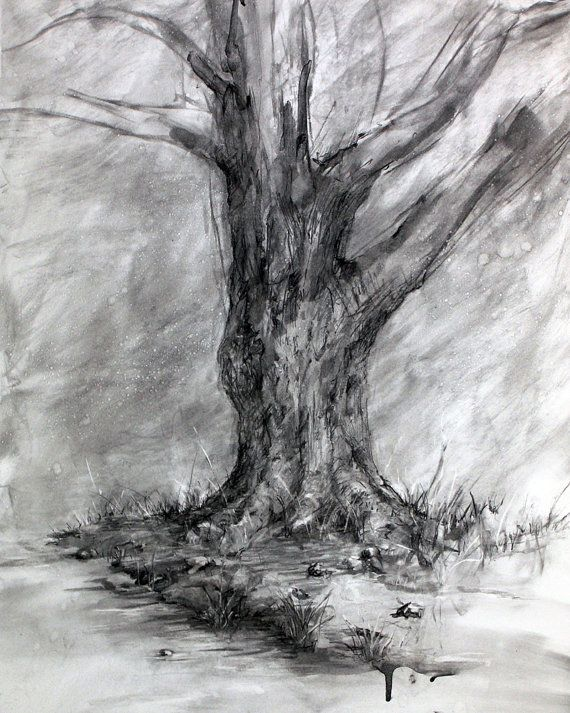 Winter's Shadow-Charcoal Tree Drawing-Fine Art Landscape
