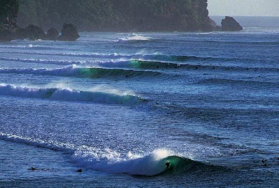Wave Guru Bali Surf  (Jimbaran)