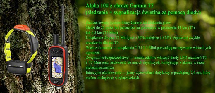 Garmin alpha 100 z obrożą T5 www.pologar.pl