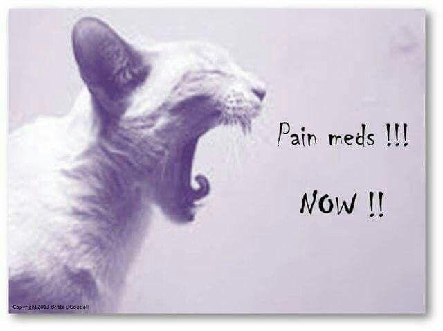 IN PAIN HELL /TRIGEMINAL NEURALGIA