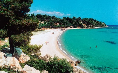 Kalogria  beach near Sithonia, Greece is beautiful and has fun beach bars:)