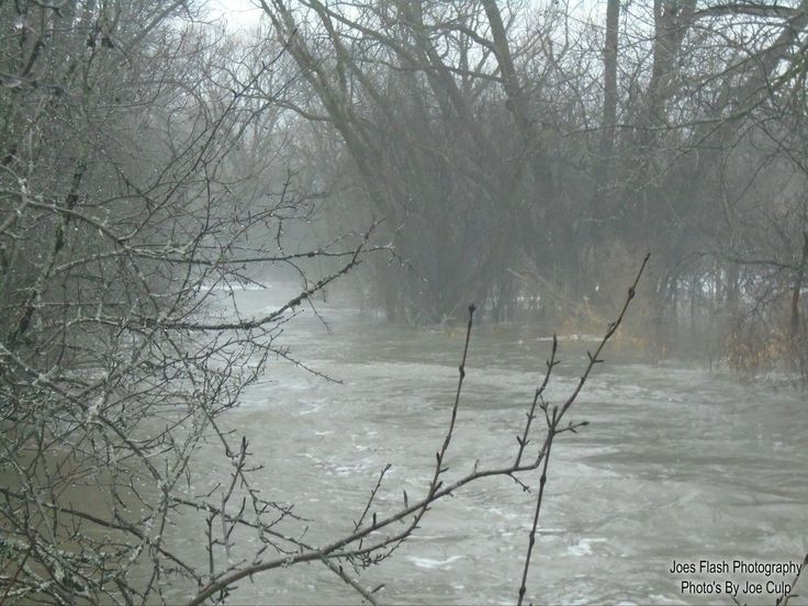 Foggy Conditions and fast Running water on Potters Creek belleville Ontario February 19, 2018