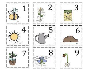 Garden preschool worksheets garden best free printable for Gardening tools preschool