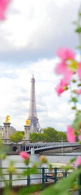 Eiffel Tower, Paris, France.  If you are interested in going to France in August 2016, contact me at bellaviaggitours@stny.rr.com.