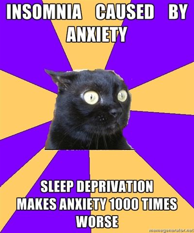 Anxiety Cat: Insomnia caused by anxiety - Sleep deprivation makes anxiety 1000 times worse