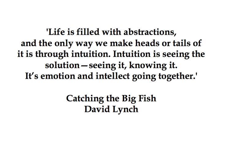 Best 25 resilience quotes ideas on pinterest dark place for David lynch catching the big fish