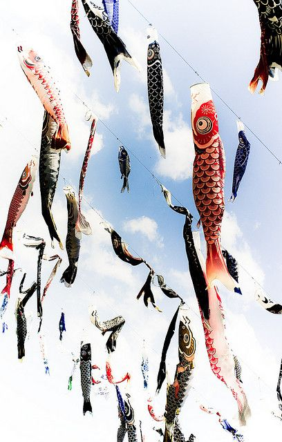 Japanese carp streamers for Children's Day 鯉のぼり
