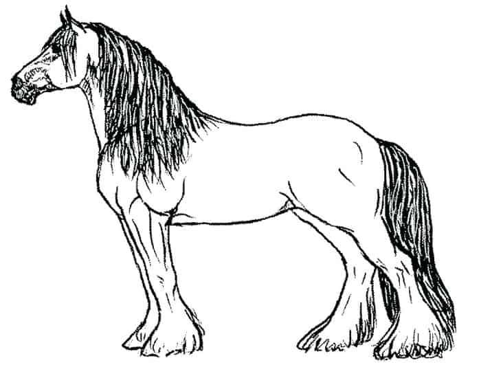 Horse Coloring Pages Color Online From 100 Horse Coloring Pages
