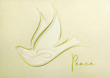 41 best holiday cards doves birds images on pinterest bringing peace peace symbolized by this darling dove a wish of the season available from in styleholiday cardsgreeting m4hsunfo Images