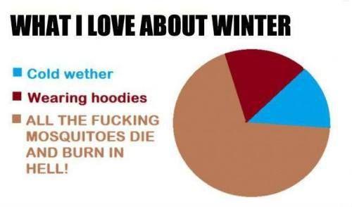 The winter..