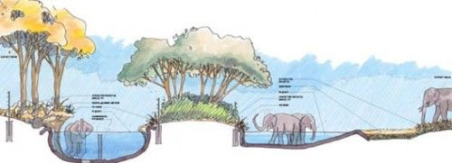 Amid Lawsuit, LA Zoo Elephant Habitat Goes Forward - Curbed LA