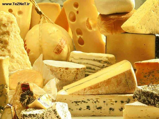 Cheese, cheese and more cheese please