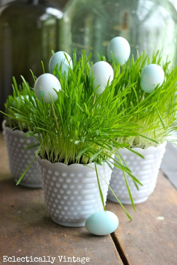 Grow Your Own Spring Grass Centerpiece - perfect for Easter www.eclecticallyvintage.com