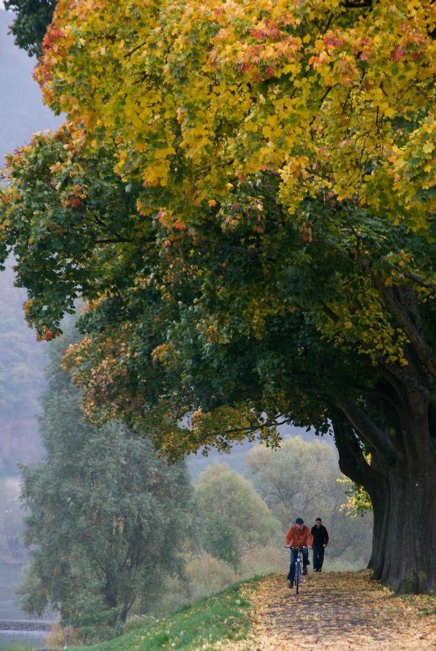 Trier, Germany - beautiful bike path