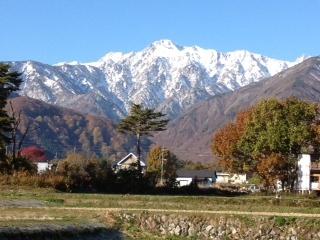 Autumn NOv 2012