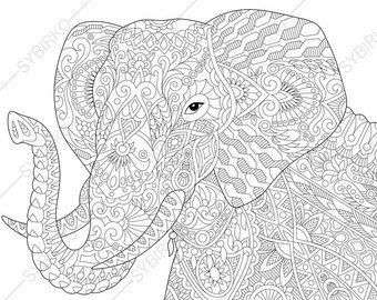 Coloring Pages For Adults Koala Bear Adult Coloring