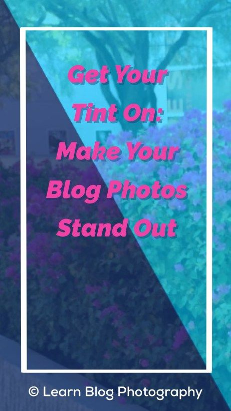 Get Your Tint On: Make Your Blog Photos Stand Out   Photo Tint   Image Tint   Blogging tips   Bloggers   Entrepreneurs   Smartphone Photography   Photo Editing apps
